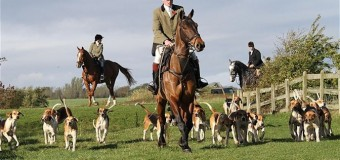 Autumn Hunting – Get Ready